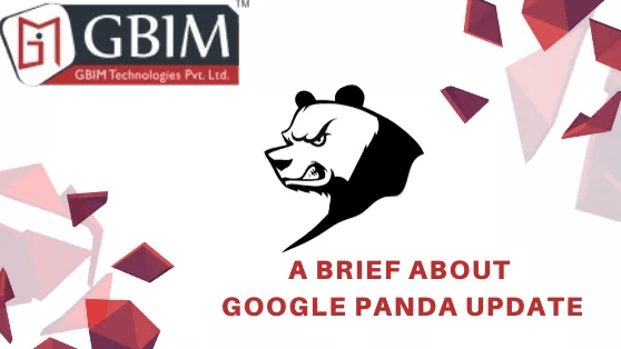 A Brief About Google Panda Update