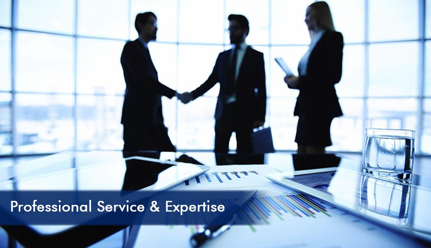 Professional Service Expertise